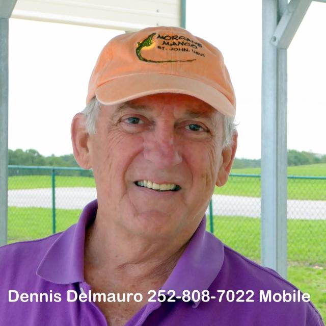 Dennis Delmauro
